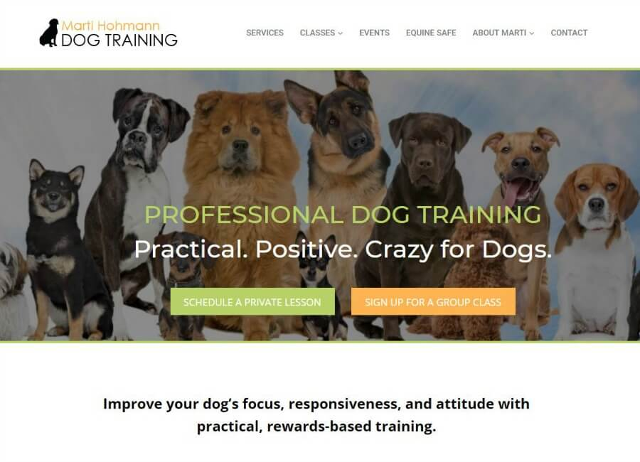 palm beach florida dog training screen shot