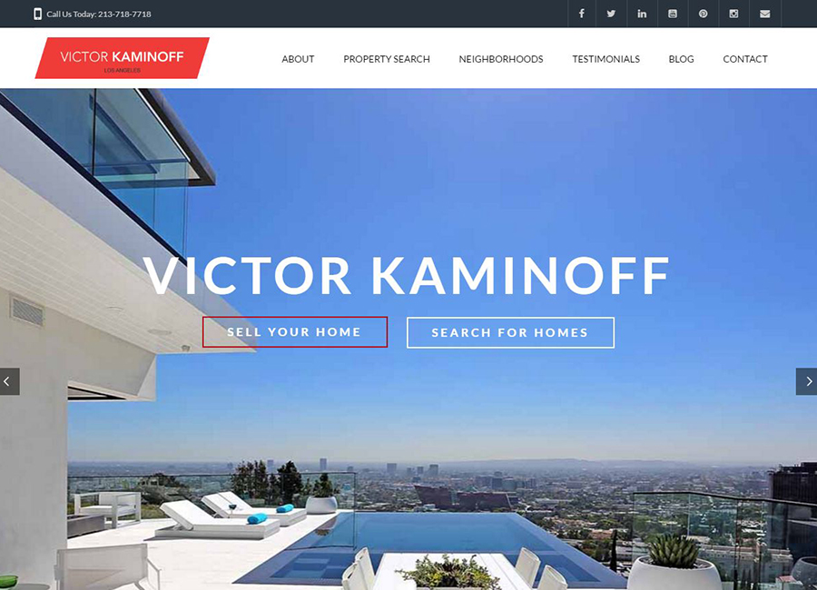 screen shot Victor Kaminoff website home page