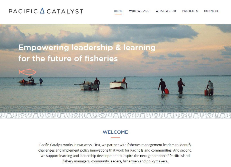 pacific-catalyst-website-heading